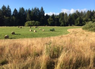 Don't let unnecessary government overstretch to threaten Lincoln County farms, Lincoln County, Oregon, Aerial Spraying Ban